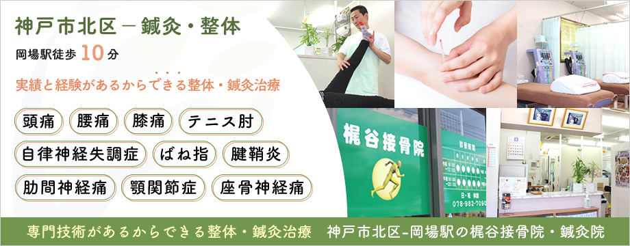神戸市-三田市の梶谷接骨院 専門技術の整体・鍼灸治療